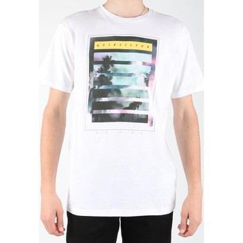 T-shirts m. korte ærmer Quiksilver  EQYZT00013-WBB0